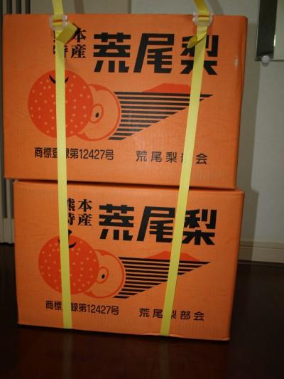 荒尾梨2箱